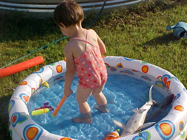 carolina in wading pool