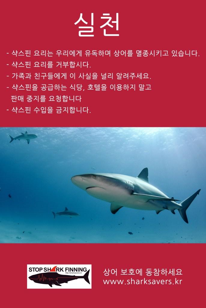 상어 보호 - 실천