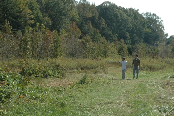 Jonathan and friends started working in field early Sat morning. Chopping trees and clearing brush for reception festivities