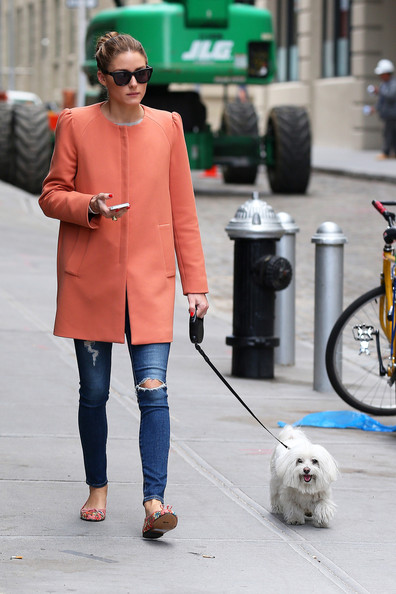 Olivia+Palermo+seen+walking+dog+Brooklyn