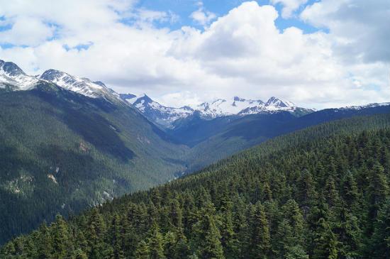 BPO 2013 Gondola Ride to Blackcomb Peak