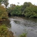 10/1/16 Shawsheen River Billerica