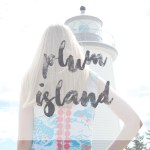 LIGHTHOUSE_plumisland