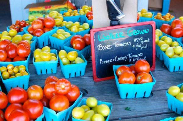 little compton farmers market