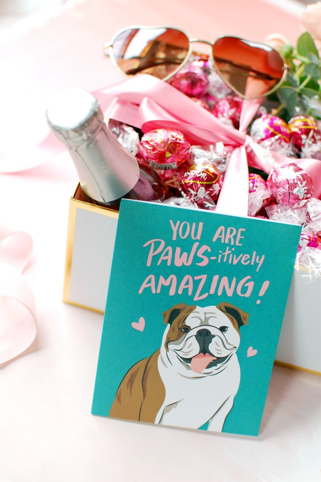 dog lover valentines day cards