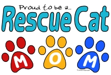 RescueCatMom3Paws