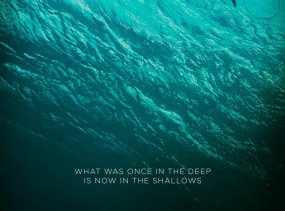 The-Shallows-Blake-Lively-Poster
