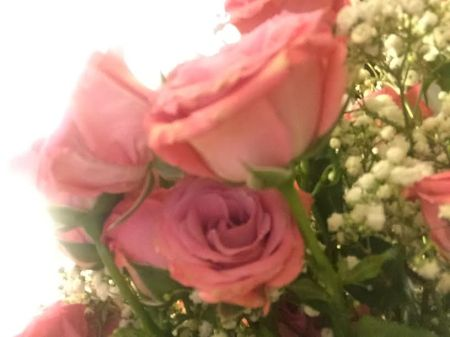 pink roses - sherry talk