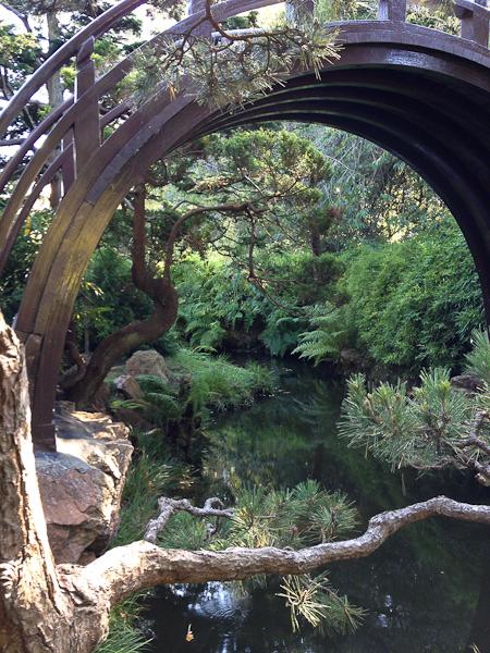 Japanese Tea Garden, Golden Gate Park, San Francisco | ShesCookin.com