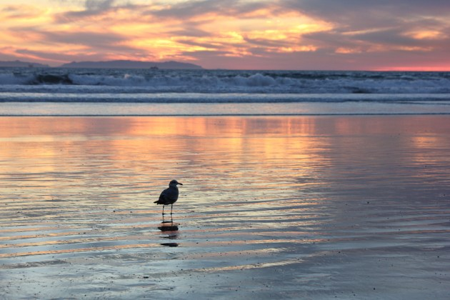 Huntington Beach,  sunset