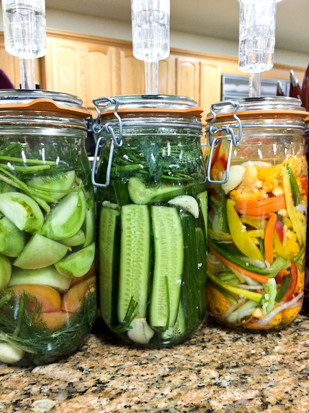 Homemade Kimchi - Learning About Fermented Foods