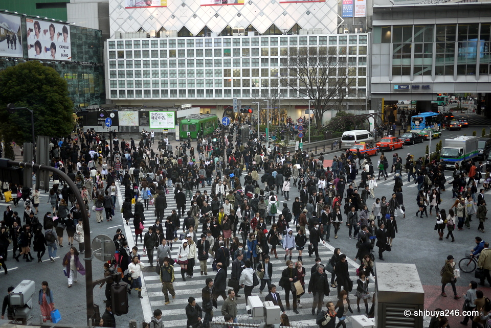 You too could be sitting here in Starbucks looking over Shibuya Crossing.