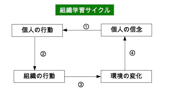organaize_study_cycle
