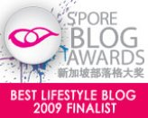 Best Lifestyle Blog 2009 Finalist