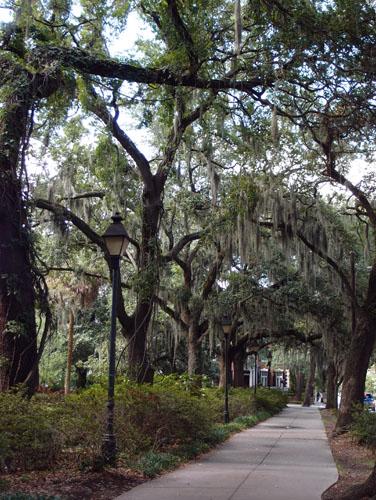 美国南方鬼城 - 萨瓦纳旅游 (Savannah Travel )