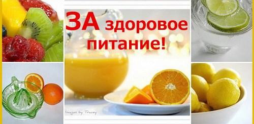 zdor_pit_04