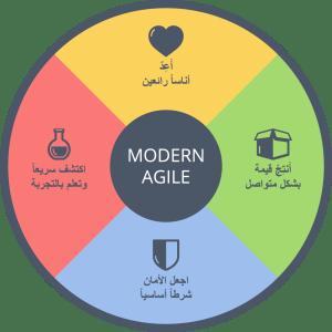modern-agile-wheel