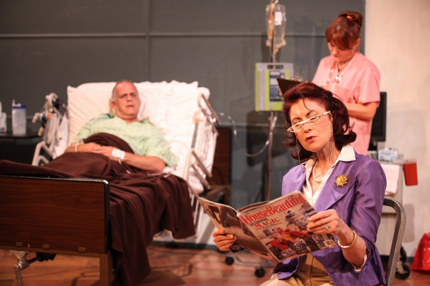 (left to right) Scott Olson, Susan Fay and Amy Kasper in AstonRep Theatre's Chicago premiere of THE LYONS by Nicky Silver, directed by Derek Bertelsen.  Photo by Emily Schwartz.