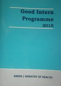 2015 Good Intern Programme booklet