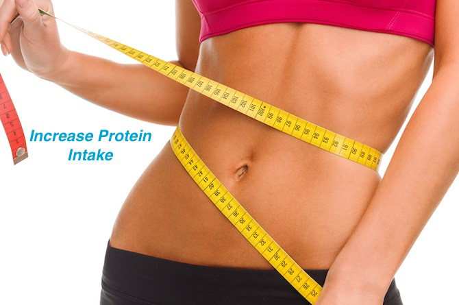 Increase Protein Intake - Lose Weight