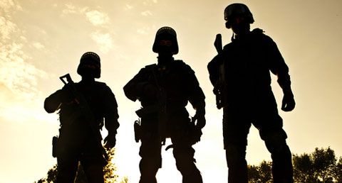 domestic-military-force-2