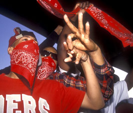 crips-bloods