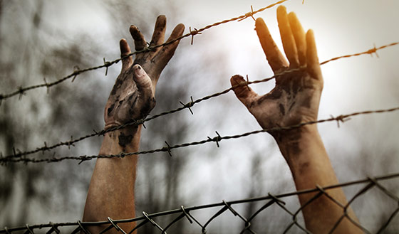 immigration-fence1