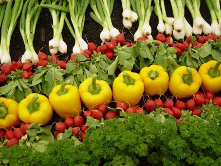7 Jenis Bisnis Modal Kecil Untuk Mahasiswa Jurusan Pertanian