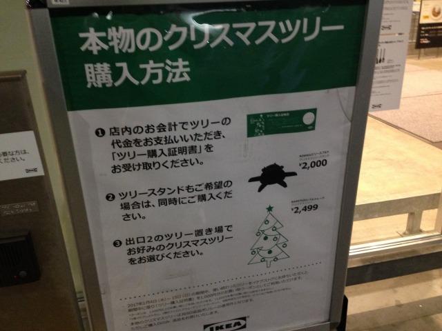 【2016】IKEAのもみの木購入!本物のクリスマスツリーを飾ろう