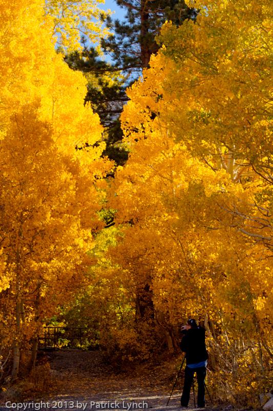 PL20131011-Fall-Colors-1075_6_7-2