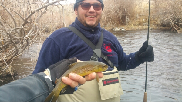 Lower owens river fly fishing report bishop ca 1 for Bishop ca fishing