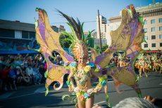 Карнавал на Тенерифе — девушка в костюме бабочки
