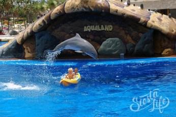 Дельфины катают детей на лодке в Акваленде на Тенерифе