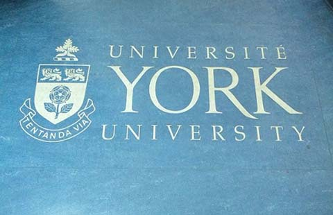York University students condemn 'blatantly racist flyers' that surfaced around campus
