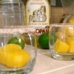 Mango-Ice Margaritas