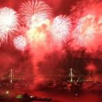 【ヒルナンデス】世界中の花火をみた写真家がえらぶオススメの花火大会とは