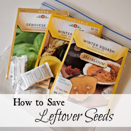 Homestead Blog Hop Feature - How to save leftover seeds