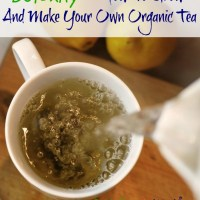 Detoxify – How To Grow And Make Your Own Organic Tea