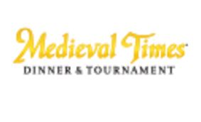 Medievil Times