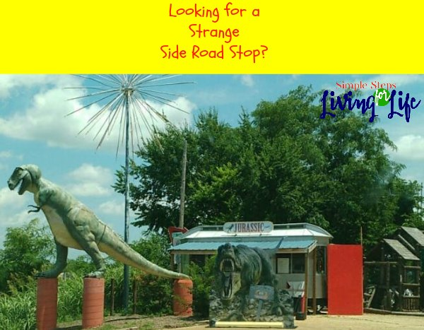 Looking for a strange side road stop?