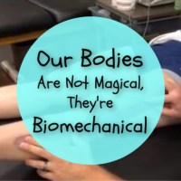 Our Bodies Are Not Magical, They're Biomechanical