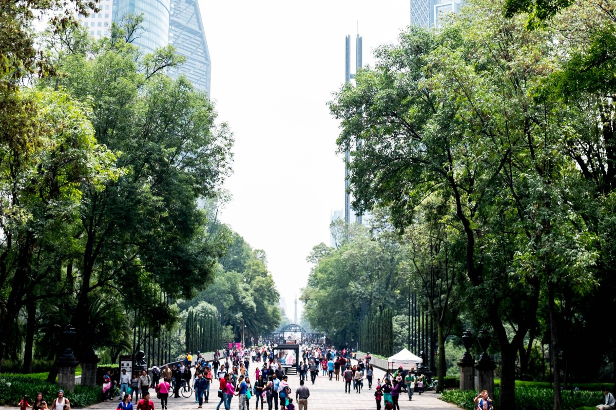 The Ultimate Guide To Mexico City (for first timers)