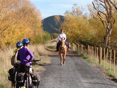cycling, rail trail,