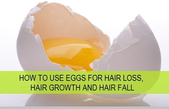 Egg To Stop Hair Fall