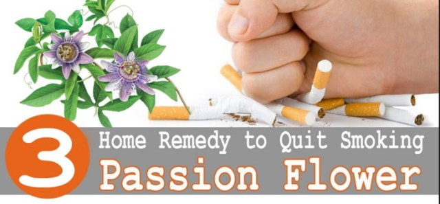 Passion flower To Stop Smoking