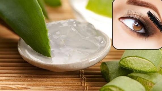 aloe vera for thicker eyebrows