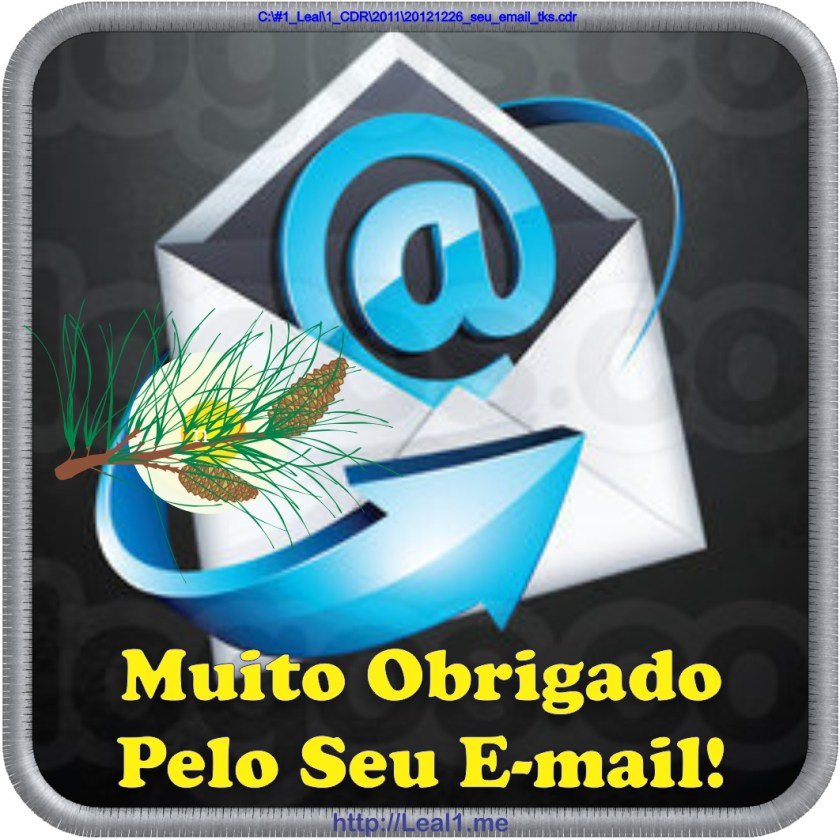 Seu e-mail