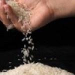 Recetas con Arroz Opciones Libres de Gluten