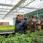 Kim Jong Un and the Tree Nursery