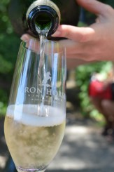 Iron Horse Vineyards 40th Anniversary